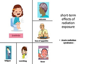short-term and long-term effects as well as the somatic and genetic effects of radiation exposure