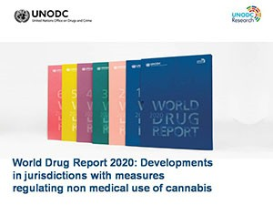 United Nations Office on Drugs and Crime (UNODC) World Drug Report 2020 - Booklet 4.1
