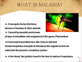 About Malaria