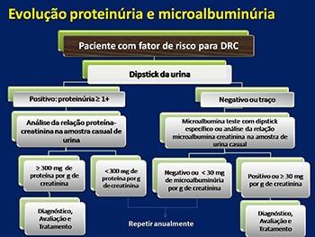 nefrology of kidney