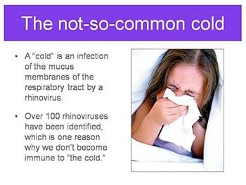 Immune System - Guarding against disease