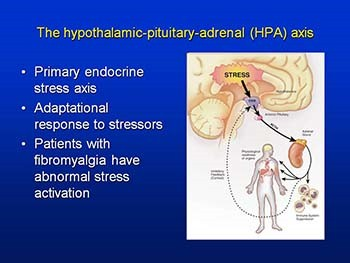 Fibromyalgia and the Social Construction of Disease