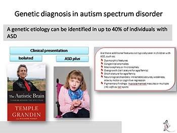Genetics of Autism Spectrum Disorder