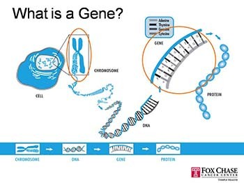 Genetics: For this Generation and the Next