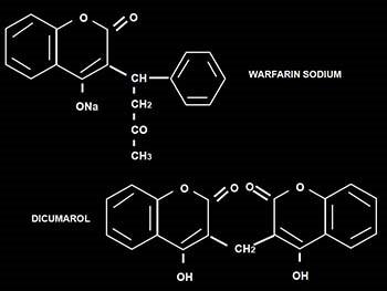 Oral Anticoagulant Therapy
