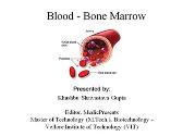 Blood - Bone Marrow