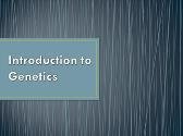 Introduction Of Genetics