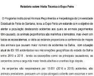 Relatorio Sobre Visita Tecnica a Expo Feira Medical Notes