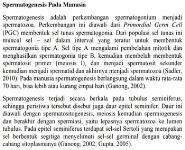 Spermatogenesis Pada Manusia Medical Notes