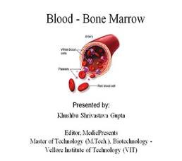 Blood - Bone Marrow